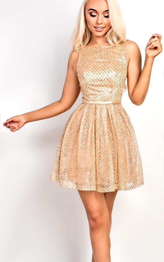 ca602a9cb8e7 Lexi Embellished Skater Dress Thumbnail