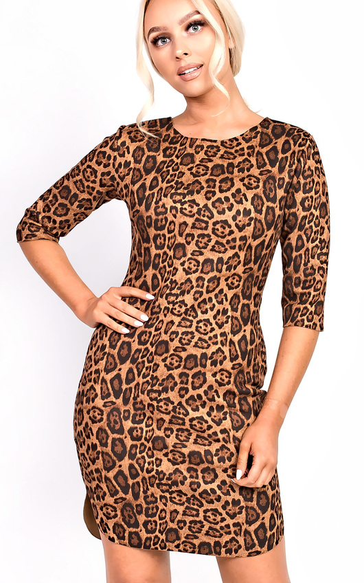 Kass Leopard Print Dress