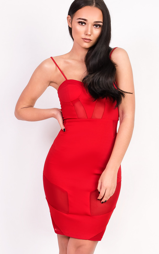 Kelsey Mesh Bodycon Dress