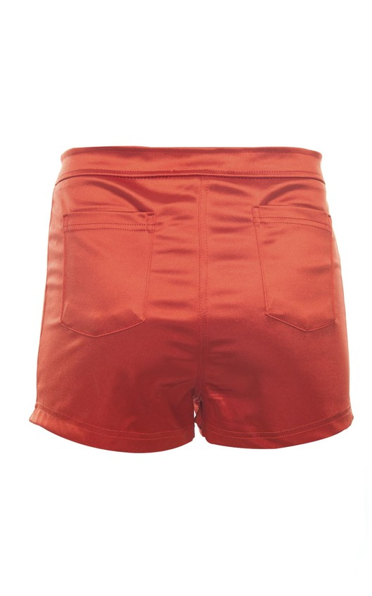 Reese High Waisted Disco Shorts