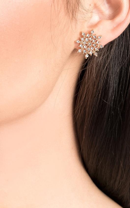 Mia Diamante Snow Flake Earrings