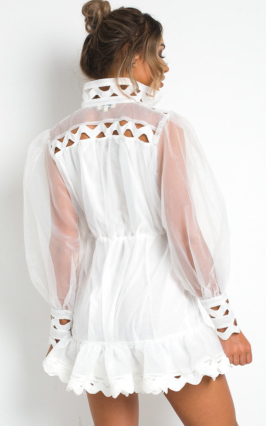 Ariana Sheer Mesh Mini Dress