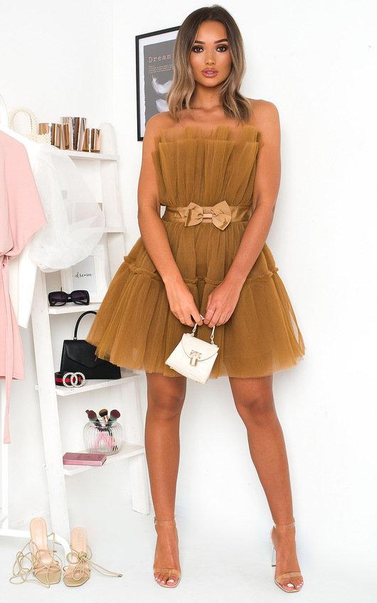 Aynsley Tulle Mini Dress