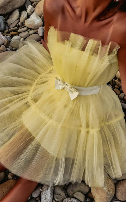 Aynsley Tulle Mini Dress
