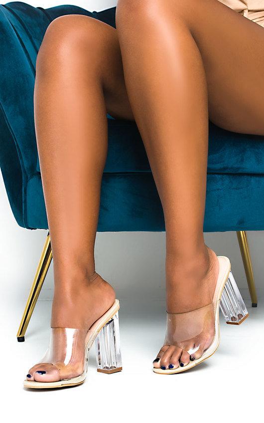 Eden Perspex Mule Block Heels
