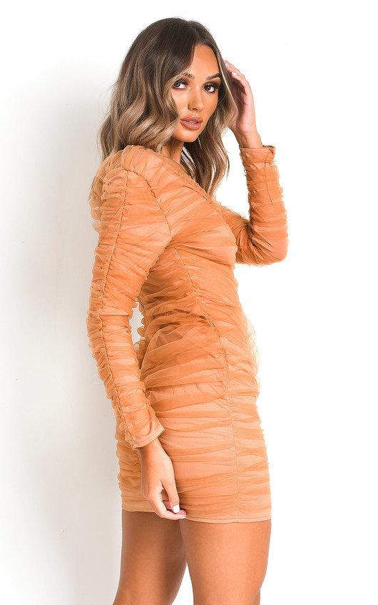 Jax Ruched Mesh Mini Dress