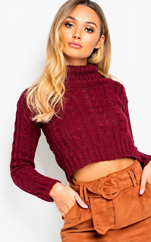 Katya Chunky Knit High Neck Cropped Jumper