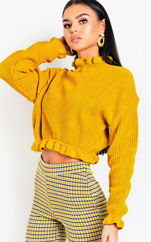 Kaylin Knitted Cropped Jumper