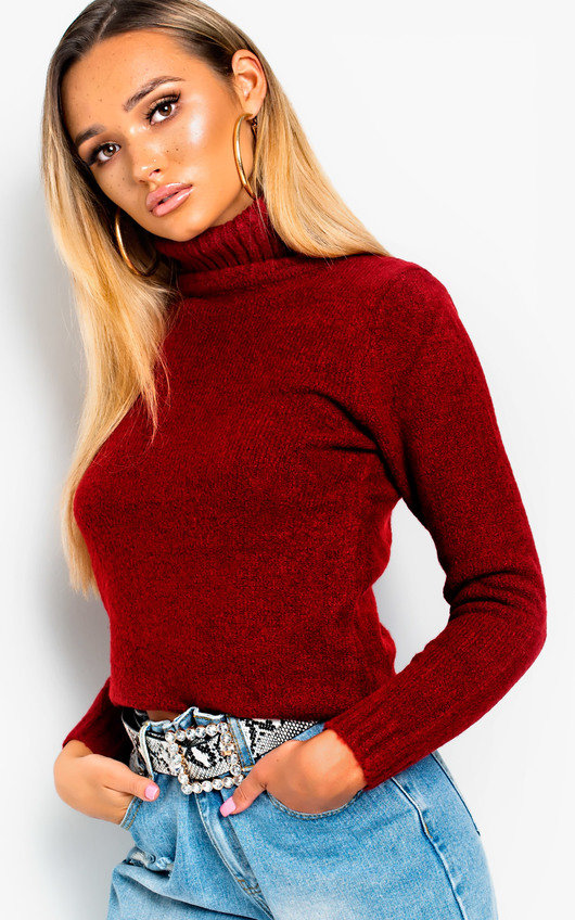 Vida Poloneck Knit Stretch Jumper