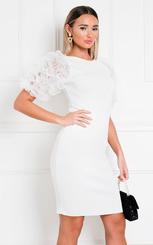 Willa Ruffle Sleeve Jumper Dress