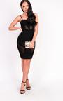Kelsey Mesh Bodycon Dress Thumbnail