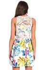 Fely Floral Lace Skater Dress Thumbnail