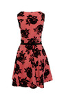 Rose Print Skater Dress Thumbnail