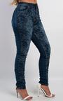 Louella Floral Print Jeans Thumbnail