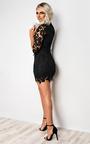 Alba Lace Bodycon Dress Thumbnail