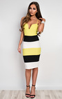 Edrie Panelled Bodycon Dress Thumbnail