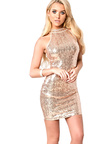 Lauriana Sequin Bodycon Dress Thumbnail
