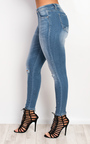 Zaraida Ripped Skinny Jeans Thumbnail