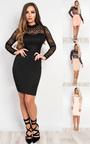 Rene Lace Bodycon Dress Thumbnail