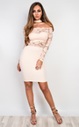 Ashford Lace Bodycon Dress Thumbnail