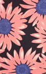Maddison Flower Print Shift Dress Thumbnail