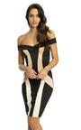 Piper Bodycon Panel Dress Thumbnail