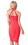 Shay Choker Neck Bodycon Dress Thumbnail