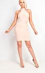 Ellie Ribbed Mini Dress Thumbnail