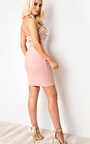 Anicka Bodycon Dress Thumbnail