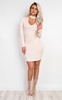 Shalonne Bodycon Dress Thumbnail