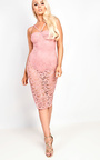 Roselyn Lace Bodycon Dress Thumbnail