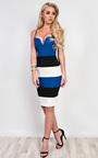 Edrie Panelled Bodycon Dress Thumbnail