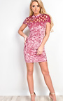 Emery Crushed Velour Lasercut Bodycon Dress Thumbnail