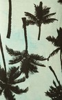 Lara Tropical Loose Fit Vest Thumbnail