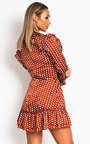 Abbie Polka Dot Frill Dress Thumbnail