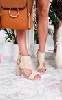 Ailidh Suedette Peep Toe Ankle Boot Thumbnail