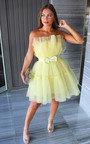 Aynsley Tulle Mini Dress Thumbnail