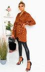 Ciara Polka Dot Shirt Dress Thumbnail