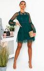 Daisyy Lace Shift Dress Thumbnail