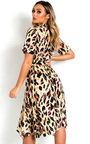 Danica Printed Frill Chiffon Dress Thumbnail