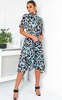 Danica Printed Frill Chiffon Dress Thumbnail