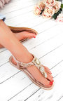 Destiny Diamante Brooch Embellished Sandals  Thumbnail