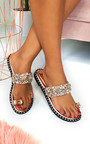 Dorothy Embellished Open Toe Sandals Thumbnail