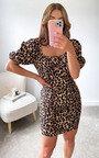 Faye Puff Sleeve Mini Dress Thumbnail
