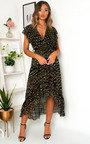 Izzy Zebra Print Maxi Dress Thumbnail
