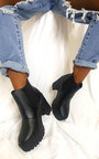 Jaz Chunky Heeled Ankle Boots Thumbnail