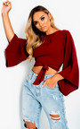 Kaitlyn Tie Flared Sleeved Crop Top Thumbnail
