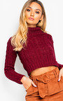 Katya Chunky Knit High Neck Cropped Jumper Thumbnail