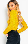 Katya Chunky Knit High Neck Cropped Jumper Thumbnail