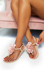 Kelly Flower Jelly Flip Flop Sandals Thumbnail